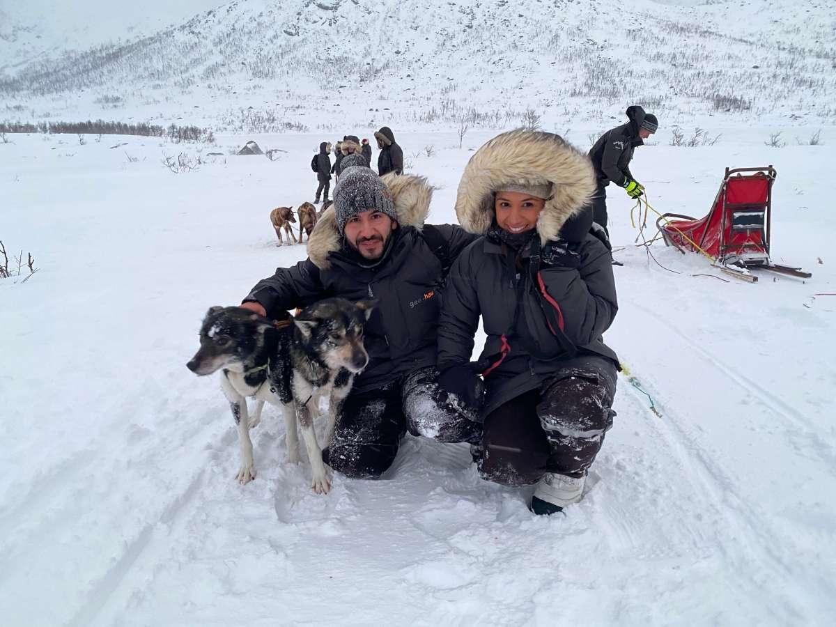 husky-sledding-tromso